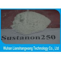 Buy cheap Testosterone Sustanon 250 Bodybuilding Hormone Supplements White Crystalline Powder from wholesalers