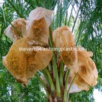 Buy cheap HDPE DATE PALM MESH BAG from wholesalers
