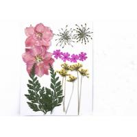 Buy cheap Dried Flower Wedding Bouquet Aromatherapy Candle Wax , Plant Specimens Dried Bridal Bouquet from wholesalers