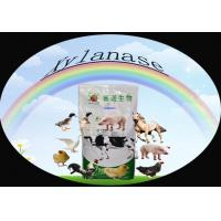 Buy cheap Powdered Xylanase Enzyme Feed Additive for Livestock / Poultry 40,000u/g Szym-XY40FE from wholesalers