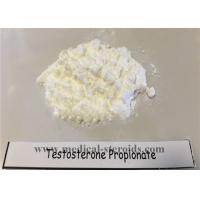 Buy cheap High Customs Pass Rate Testosterone Propionate 100mg/Ml for Muscle Growth from wholesalers
