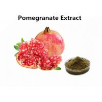 Buy cheap Supplements Fruit Extract Powder Pure Natural 30% Punicalagin Pomegranate Extract from wholesalers