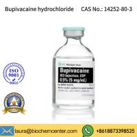 Quality High Purity Pain Killer Bupivacaine Hydrochloride CAS 14252-80-3 for sale