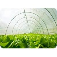 Buy cheap 200 Micron White Uv Resistant Plastic Rolls Low Density For Protecting Crops from wholesalers