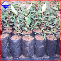Buy cheap Non Woven Weed Control Fabric Material , Polypropylene Landscape Fabric from wholesalers
