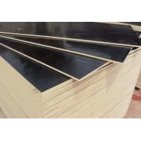 Buy cheap Water Boiled Proof Black Film Faced Plywood For Office Building Projects 2440x1220mm from wholesalers