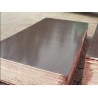 Buy cheap Brown Film Faced Plywood With Poplar Core from wholesalers