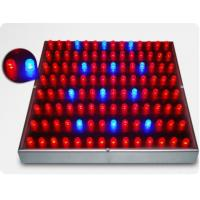 Buy cheap 45w Led Grow Lights from wholesalers