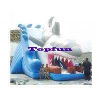 Buy cheap Great White Shark Kids Inflatable Slides Inflatable Dry Slides Amusement from wholesalers