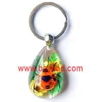 Buy cheap real beetle with real flower keychains,insect key chains,bug keyring,insect keychains product