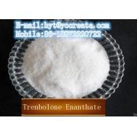 CAS10161-34-9 Testosterone Raw Steroids Powder 98% Min USP28 Trenbolone Enanthate