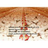 Buy cheap Poultry Farming Automatic Broiler Ground Rearing System & Broiler Deep Litter System in Chicken House from wholesalers