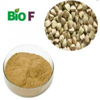 Buy cheap Natural Energy Supplements Buckwheat Powder With Flavon Solvent Extraction from wholesalers