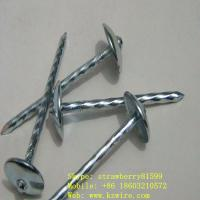 "Buy cheap Galvanized Roofing Nails, BWG12/2"" product"