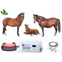 Buy cheap Class IV Veterinary Laser Therapy , 980nm Wound Healing Cold Laser Treatment For Dogs from wholesalers