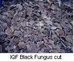 Buy cheap IQF Mushroom from wholesalers