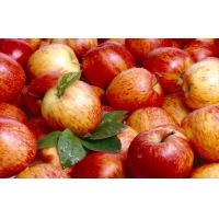 Buy cheap Pome Fruit , Fresh Red Organic Fuji Apple 7cm With Sugars , Vitamin C from wholesalers