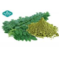 Buy cheap Healthy Natural Botanical Extracts , Moringa Leaf Extract Powder For Weight Loss from wholesalers