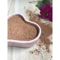 Food Grade Plain Cocoa Powder , Cocoa Extract Powder For Food And Beverages