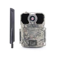 Buy cheap Wildgame Innovations Deer 4G Wildlife Camera / GSM GPS 4G Lte Trail Camera from wholesalers