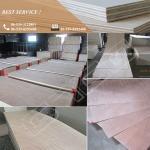 Buy cheap 820X2050X2.7mm Okoumei Door Skin Plywood from wholesalers