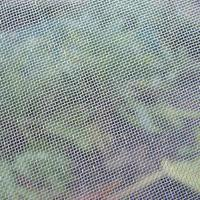 Buy cheap Fruit Trees Protection Insect Mesh Netting Anti Aphid Mesh Net High Tensile Strength product