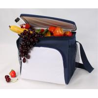 Buy cheap cooler bag for food soft cooler bag from Xiamen-HAC13106 product