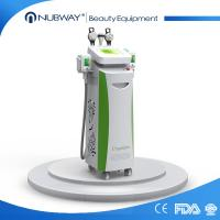 Buy cheap Effective 3 in 1 cryolipolysis machine / cryolipolysis fat freeze slimming machine from wholesalers