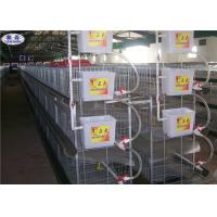 Buy cheap H Type Broiler Chicken Cages Automatic 3 Tiers Battery Laying Equipment from wholesalers