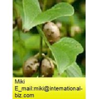 Buy cheap Wild Yam P.E from wholesalers
