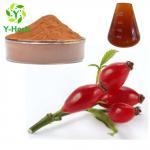 Buy cheap Rosa rugosa thunb Bulk Rosehip Powder 10% UV Rose Hip Extract Flavone from wholesalers