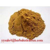 Buy cheap Reishi Mushroom Extract from wholesalers