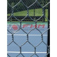 Buy cheap Hex mesh for Paddle Tennis Courts Wholesale 16 AWG Wire Professional Manufacturer product