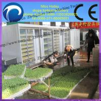 Buy cheap hot sale stainless steel automatic bean sprout growing machine from wholesalers