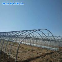 Buy cheap Large Mental Material Single Span Tunnel Plastic Greenhouse Uv Resistant Clear Sheeting from wholesalers