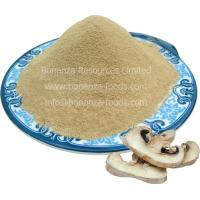 Buy cheap Dehydrated Button Mushroom Powder from wholesalers