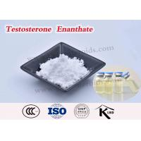 Buy cheap Test Enanthate 250 Testosterone Enanthate Injectable Steroids USP Grape Seed Oil from wholesalers
