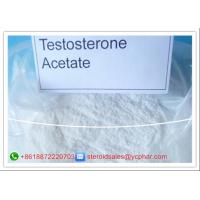 Buy cheap High Purity Testosterone Anabolic Steroid Testosterone Acetate For Muscle from wholesalers