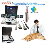 Buy cheap Laptop Color Doppler ultrasound system EW-C8V with convex probe for veterinary with specialty obstetric measurement soft from wholesalers