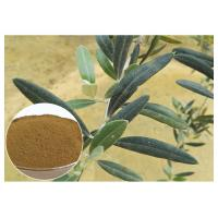Buy cheap Anti Oxidation Natural Olive Leaf Extract Hydroxytyrosol 20% Solvent In Water from wholesalers