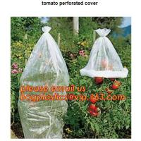 Buy cheap Garden used tomato plastic film cover,high light transmittance solar control seeding nursery greenhouse covers,100% virg from wholesalers