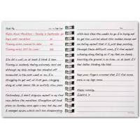 New Design 2013 Daily Agenda