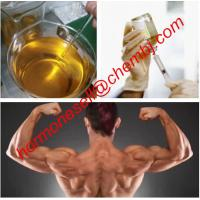 Buy cheap Boldenone steroid Boldenone base powder for Muscle Building and bodybuilding supplements from wholesalers