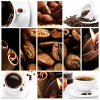 Buy cheap customs clearance service that export Kenya coffee bean to mainland of china from wholesalers
