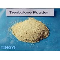 Buy cheap CAS 10161-33-8 Trenbolone Acetate Powder Bulking Cycle For Muscle Growth from wholesalers