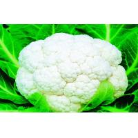 Buy cheap Low Carbohydrate Freezing Fresh Cauliflower Preventing Prostate , Ovarian, Taste delicious from wholesalers