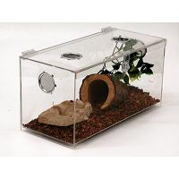 Buy cheap Acrylic Reptile  case from wholesalers