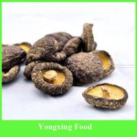 Buy cheap autumn Mushrooms Product Type and Brown Color Dried mushroom from wholesalers