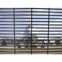 Buy cheap Powder Coated Prison Wire Fence , Commercial Anti - Climb Security Fence from wholesalers