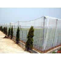 Buy cheap Plastic Agriculture Shading/Scaffolding Netting from wholesalers